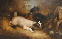 Edward Armfield (1817-1896) British. Terriers in a Barn, Oil on Canvas, Signed, 20