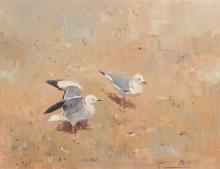Errol Stephen Boyley (1918-2007) South African. A Study of Gulls, Oil on Board, Signed, 14
