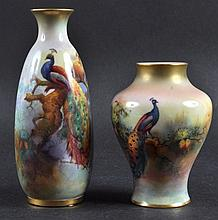A ROYAL WORCESTER VASE painted with a peacock and