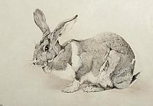 Winifred Maria Louise Austin (1876-1964) British.