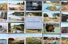 1909 Yellowstone Park Views Northern Pacific Ry. T