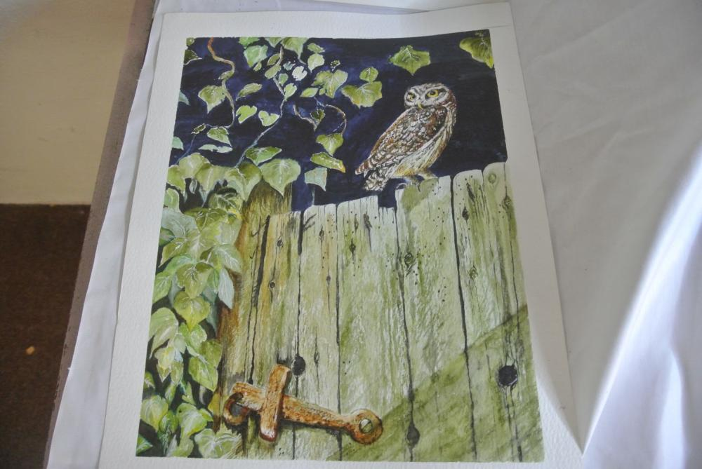 Lot 192: A collection of 5 original watercolour paintings of various birds.