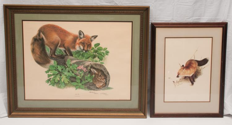 Framed print of a red fox standing on a hollow log with rabbit inside the log by Richard Timm, 30