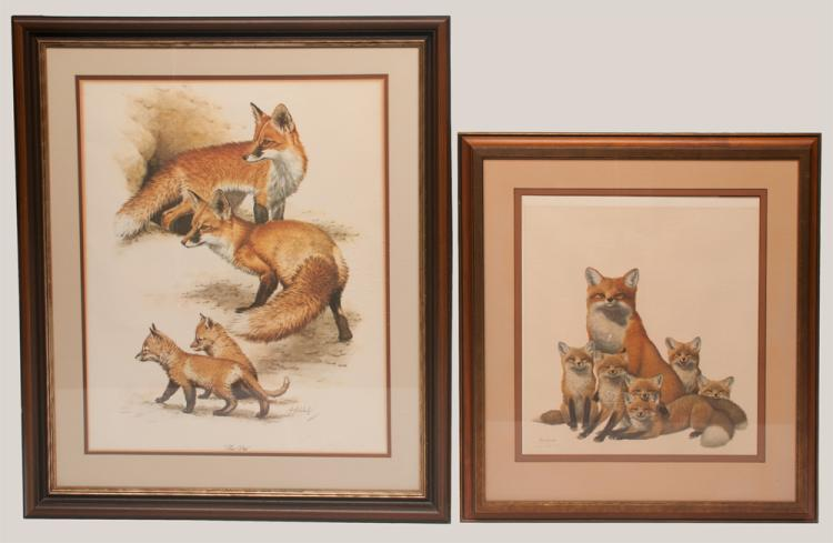 Framed print of a mother fox with six cubs by Ray Harm, 33