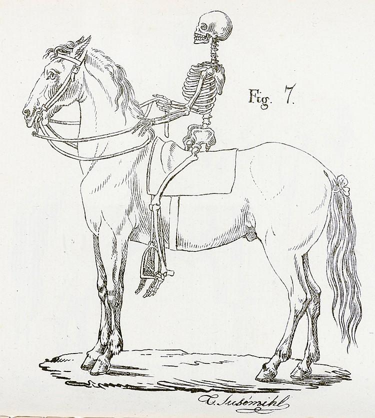 Militaria - - Chatelain, Reneé Julien. Le guide des officiers de cavalerie,