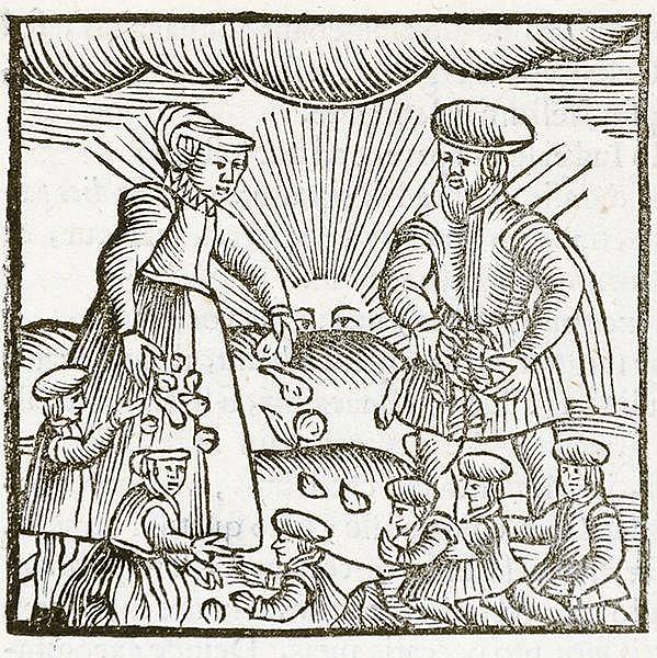 Judaica - - Leusden, Johannes. Philologus Hebraeo-Mixtus, unà cum spicilegi