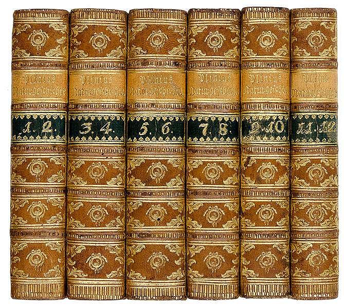 Plinius Secundus, Gaius. Naturgeschichte übersetzt von Gottfried Große. 12