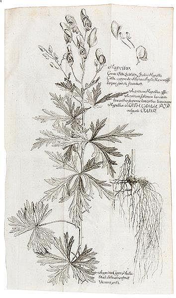Medizin - - Störck, Anton von. Zwei Sammelbände mit sieben Werken des Wiene