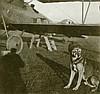Nationalsozialismus - - Schütze, Hans. Umfangreicher Nachlass des Jagdflieg