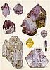 Mineralogie - - Brauns, Reinhard. Das Mineralreich. Mit 275 Text-Illustrati