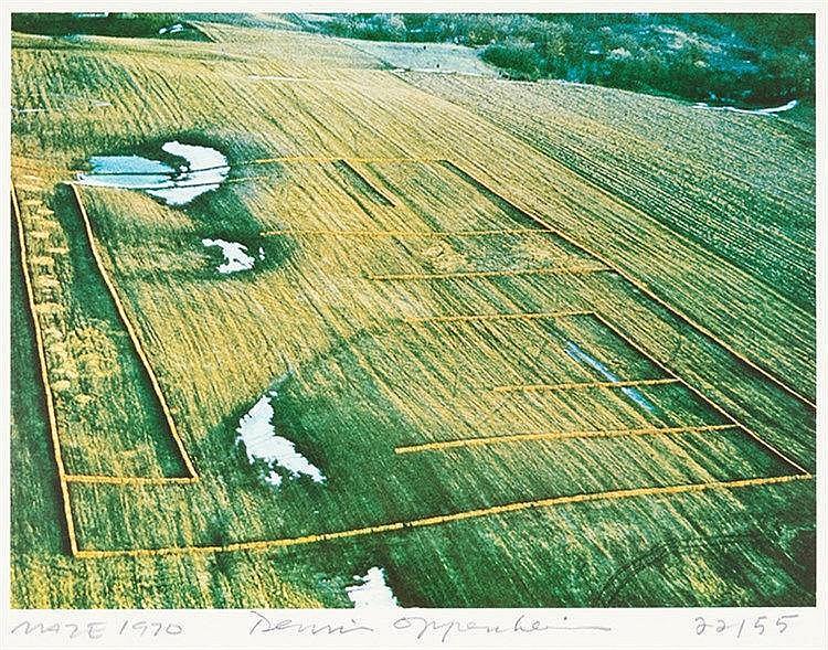 Oppenheim, Dennis. Maze. Farboffset-Lithographie auf Papier. Unten mittig s