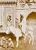 Orient - - Album mit 100 Ansichten aus Ägypten, dem Libanon und Palästina.