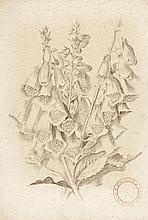 Bock, Ludwig Nachlass mit 15 Aquarellen, 38 B