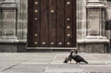 Photograph on Archival Paper -The Solid Door
