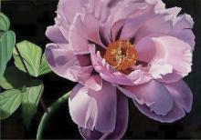 Lavender-Oil on Canvas Original Ceballos
