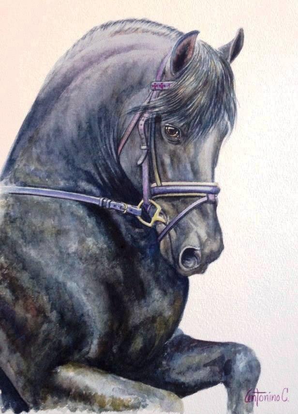 Original Watercolor by Antonino
