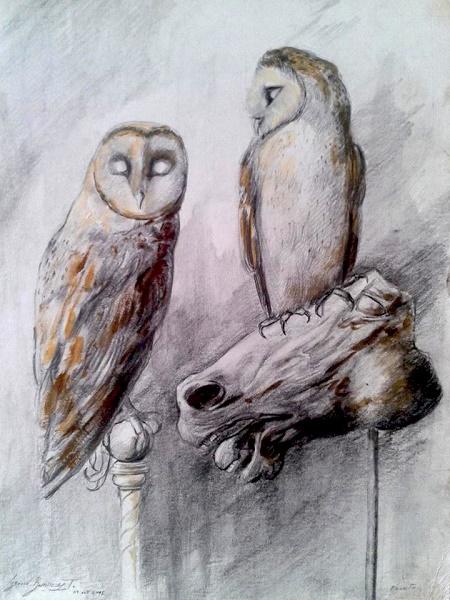 Perched Owls-Artist Proof-Original Nacho Ramirez