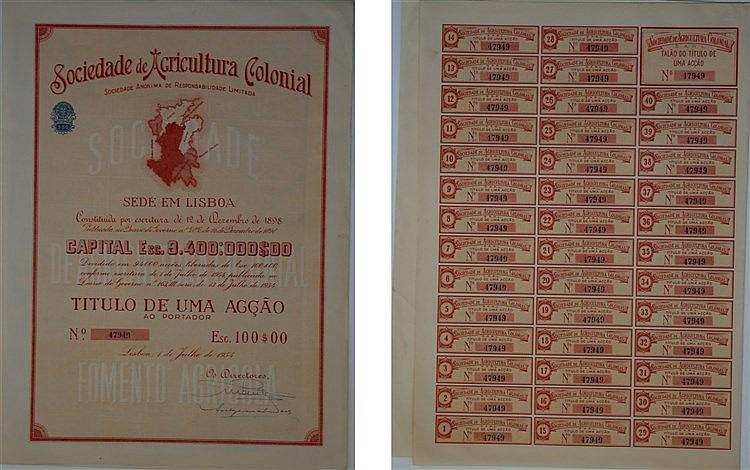 Título de Acção - 100$00 1954