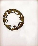 María Fernanda Cardoso S/t I Alas de mariposa s/papel 1995 43 x 35 cm. Madrid, Colombia Visible/Invisible. Galería Fernando Pradilla. Noviembre 2001.