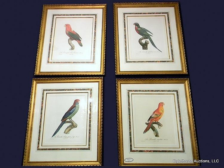 SET OF FOUR ENGRAVINGS OF BIRDS