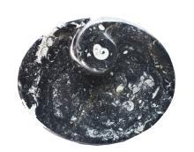 Morracan Fossiliferous Dish