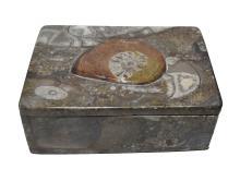 Rectangular Fossil Orthoceras Ammonite Brown Jewelry Box,Morocco