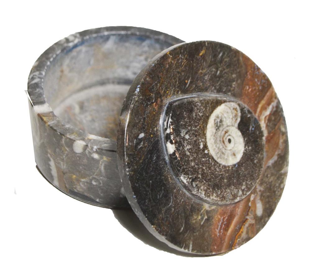 Large Fossiliferous Jar