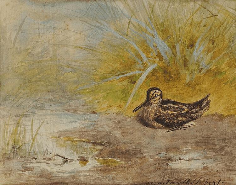Jules Bertrand GÉLIBERT (1834-1916) Bécasse en bord d'étang Aquarelle Signé en bas à droite 20 x 23 cm Provenance : Descendance directe de l'artiste