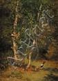 Jules Bertrand GÉLIBERT (1834-1916) Geai au pied des bouleaux Huile sur carton fort 33 x 24 cm Tampon de l'atelier Gélibert au dos Provenance : Descendance directe de l'artiste