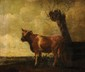 ECOLE HOLLANDAISE du XIXème siècle Vache dans un pré Huile sur panneau (parqueté) 25 x 30 cm (9,8 x 11,8 in.)  Oil on panel