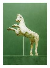 Grande Grèce, Canossa ? IVème-IIIème siècle avant J.-C.  CHEVAL cabré. Terre cuite à engobe blanc.  Pattes cassées, collées.  H. 23 cm - Long. 20 cm