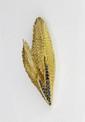 MAUBOUSSIN BROCHE en or jaune stylisant une feuille ponctuée de deux ceintures de saphirs. Années 1970 Poids brut : 20,5 g