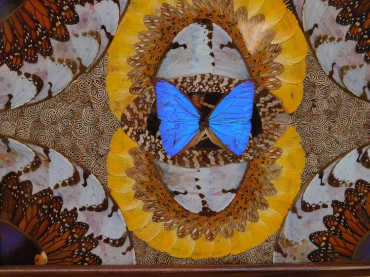 Lot 92: Vintage Brazilian Butterfly Wing Mosaic Inlaid