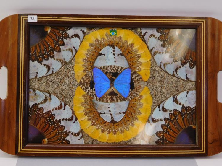 Vintage Brazilian Butterfly Wing Mosaic Inlaid