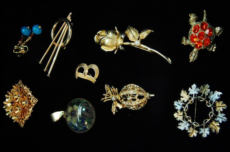 Vintage Costume Jewelry Brooch Lot Of 9
