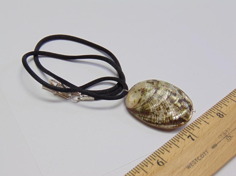 Small Polished Abalone Shell Pendant Necklace