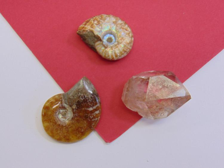 Quartz Crystal & Ammonite Fossil Lot Of 3