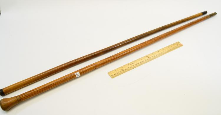 Lot 180: Lot Of 2 Horn And Brass Tipped Wooden Walking Sticks