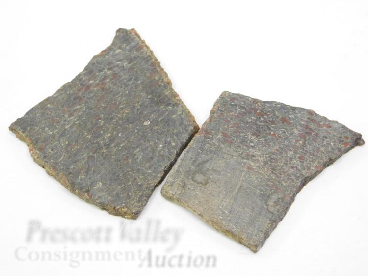 Lot of 2 Cut Dinosaur Bone Slabs for Jewelry Making