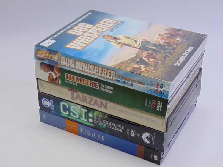 Lot 66: DVD Lot of Dog Whisperer Tarzan CSI and House