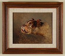 EDWIN HENRY LANDSEER (1802-1873, UK) - BULLDOG - Oil on board portrait image of a bulldog on a plain brown background