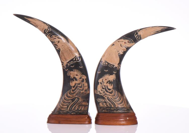 Pair of Carved Buffalo Horns With Inscribed Dr
