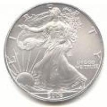 2006 Silver Eagle 1 oz Uncirculated #PAPPS96123