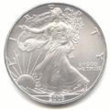 2003 Silver Eagle 1 oz Uncirculated #PAPPS96130