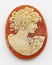 25 mm x 19 mm Oval Hand Carved Italian Shell Cameo - Loose - Unmounted #PAPPS98397
