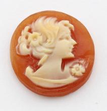 14 mm Round Hand Carved Italian Shell Cameo - Loose - Unmounted #PAPPS98398