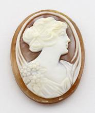 25 mm x 18 mm Oval Hand Carved Italian Shell Cameo - Loose - Unmounted #PAPPS98399