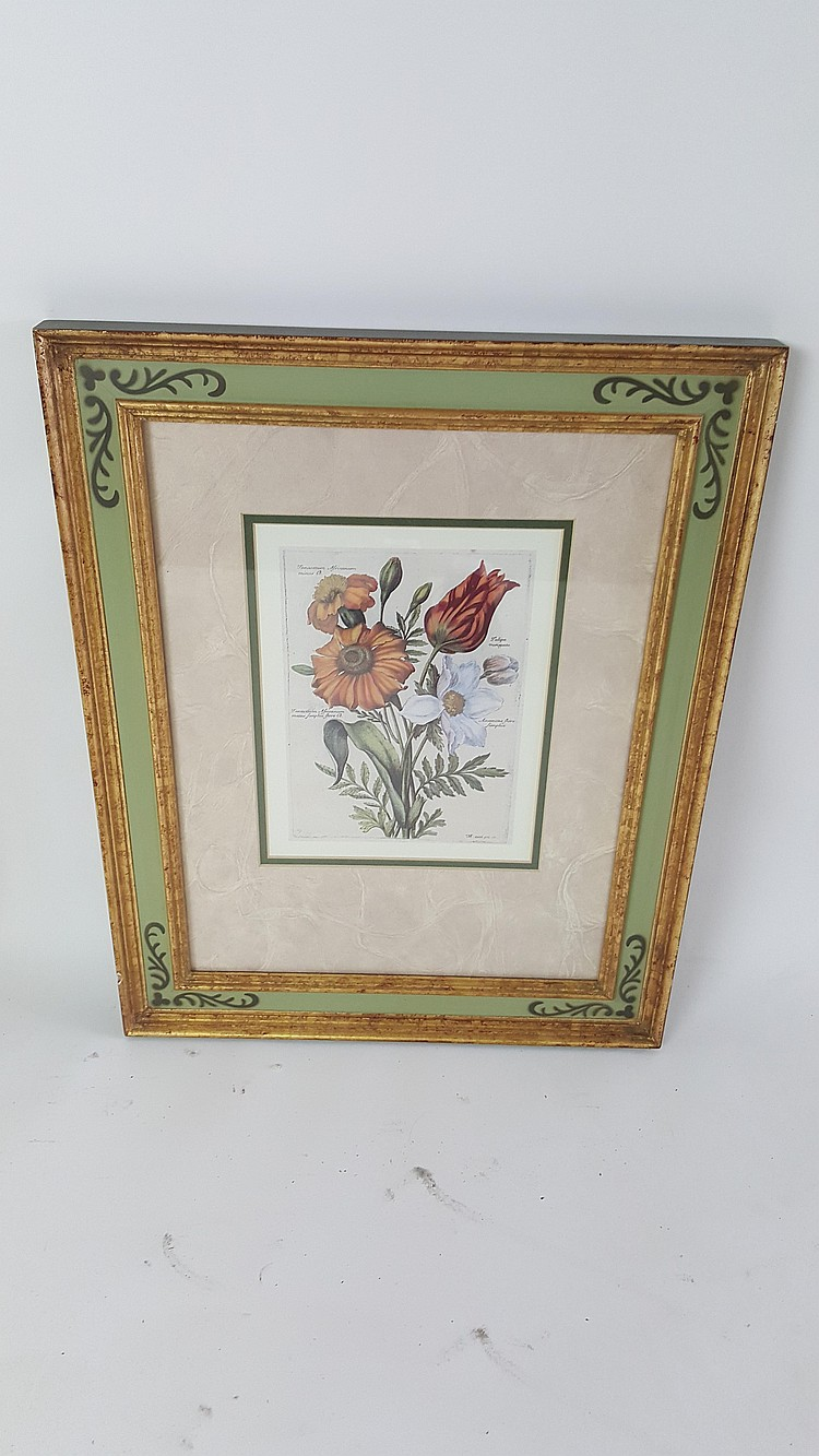 Three framed botanical prints for Where to buy framed art