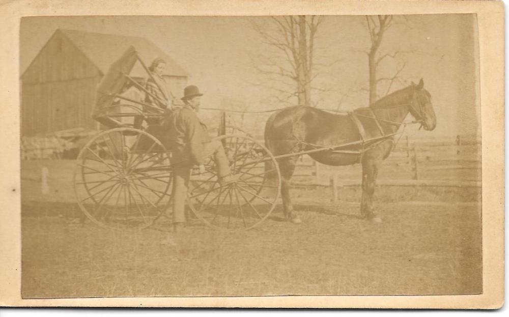 Horse drawn carriage CDV
