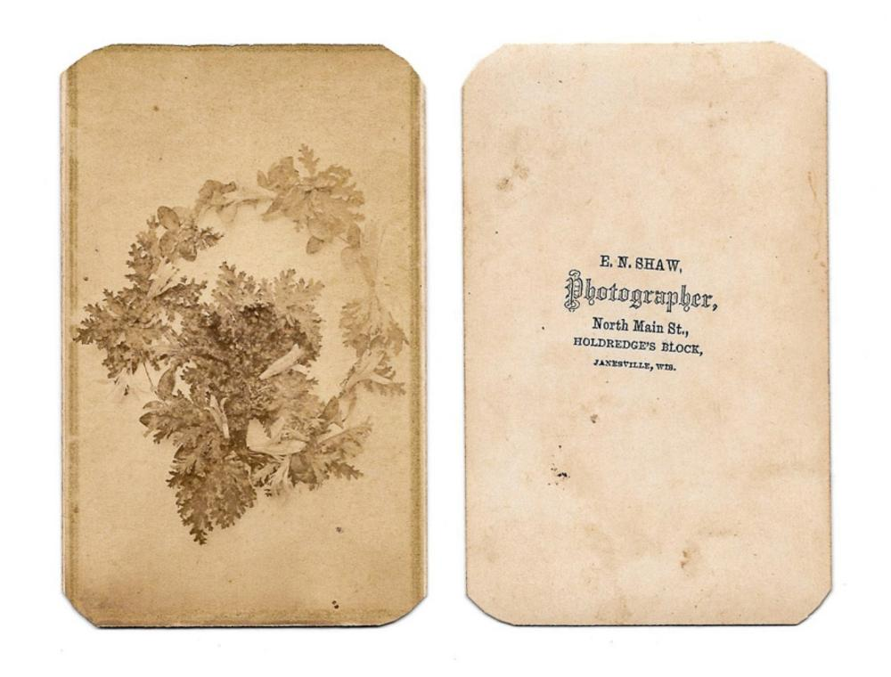 CDV of a flower, 1860s